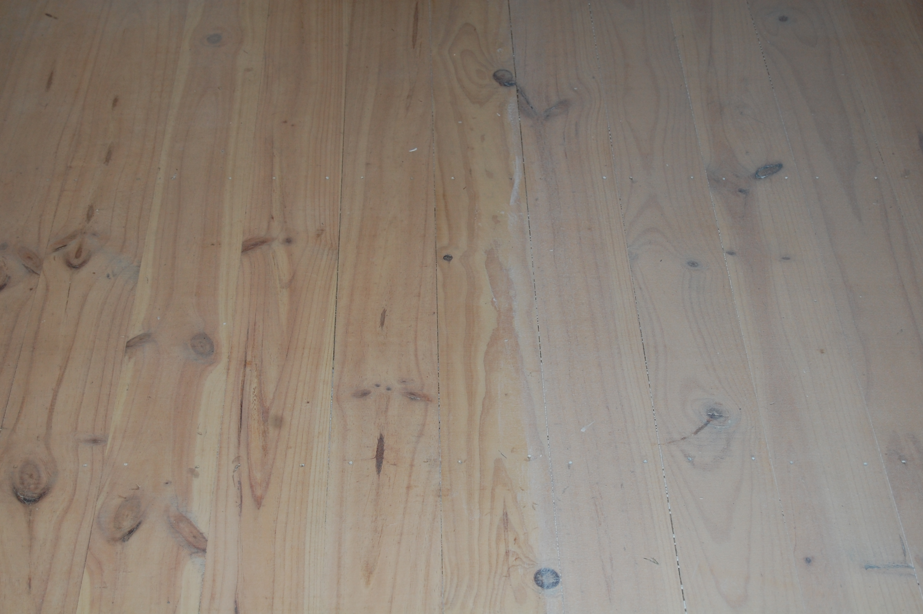 Paint Wood When Damp